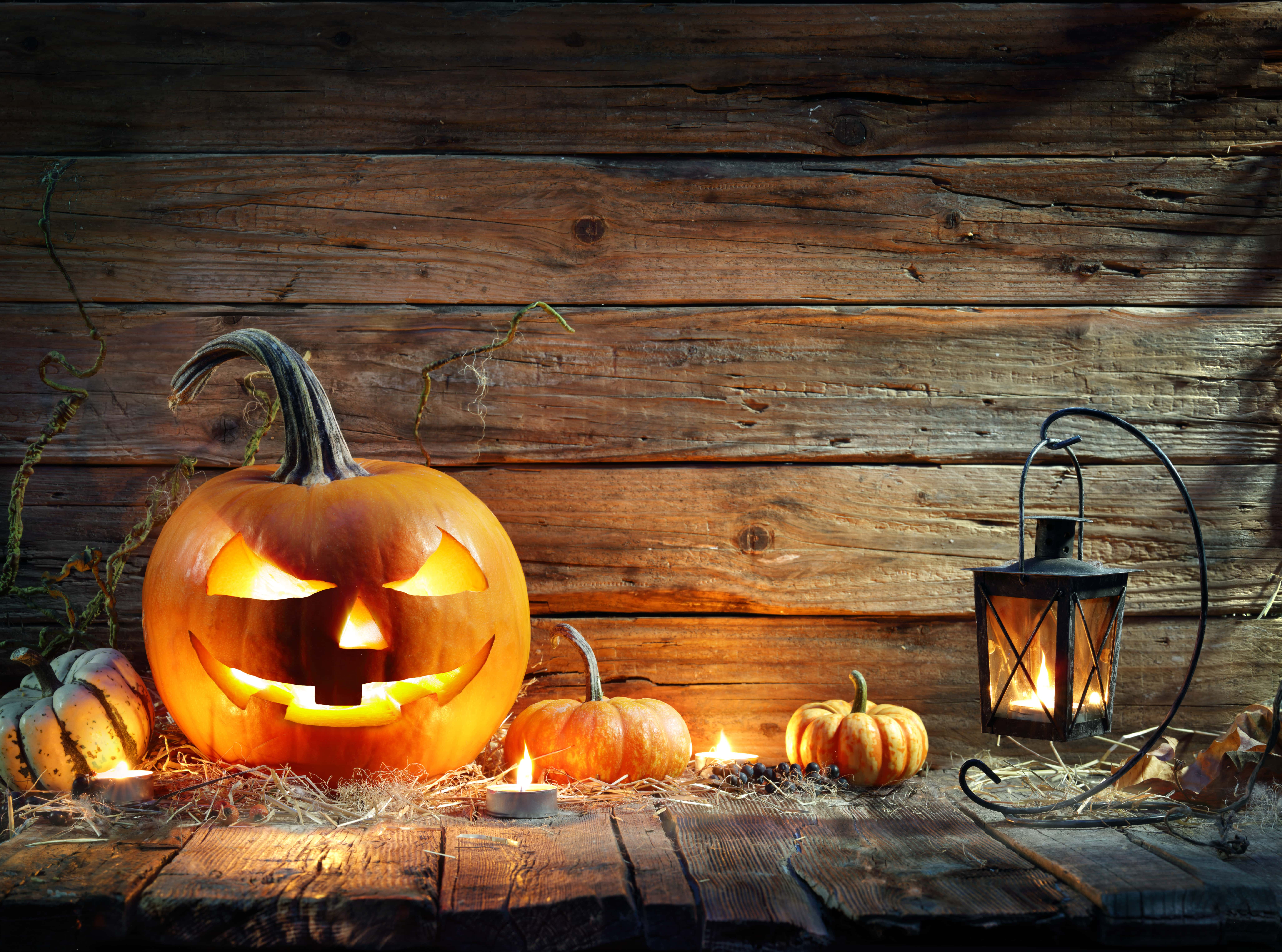 Addobbi Tavola Per Halloween lanterne halloween per decorare la casa - addobbi amazon